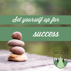 Set Yourself Up for Sucess